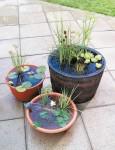 diy-portable-outdoor-water-garden-1