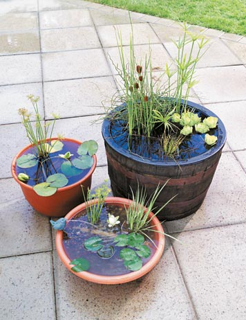 diy-portable-outdoor-water-garden-1