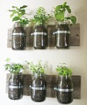 Wall garden with jars