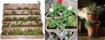 Tiered gardens -pots