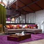 living-room-sofas-roche-bobois-2