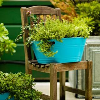 Cool Looking Garden Pots My Desired Home