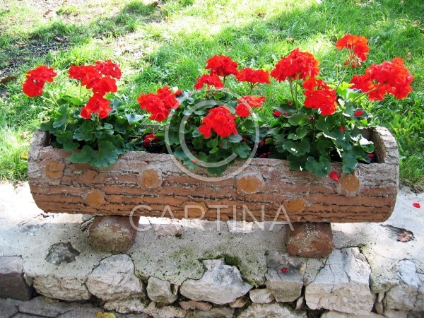 Summer Flower Pot Ideas For Pinterest