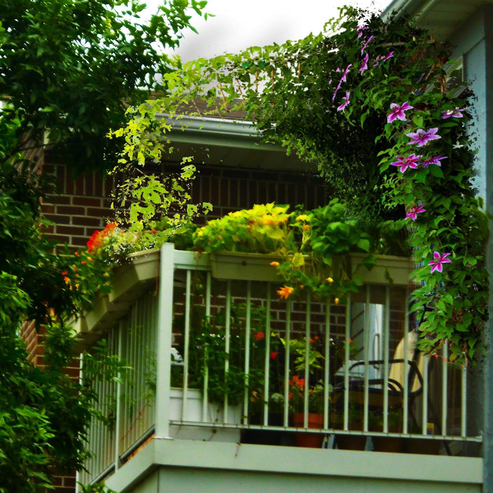 Green balcony ideas11 my desired home for In the balcony