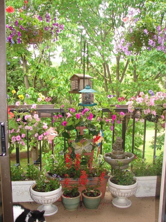 green balcony ideas7