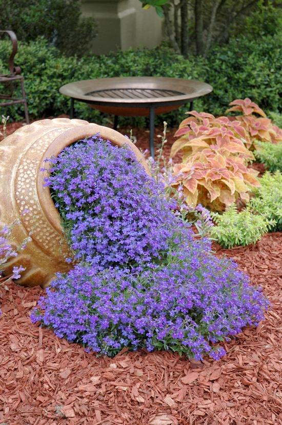 Tiny Home Designs: Garden Design Ideas3