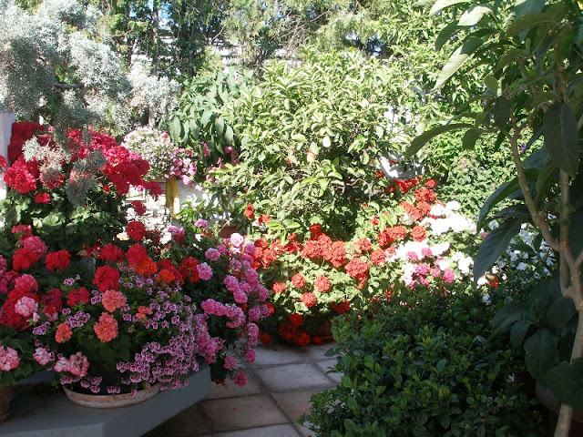 The most beautiful roof garden1