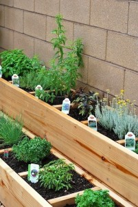 Ideas for small gardens - Balconies36
