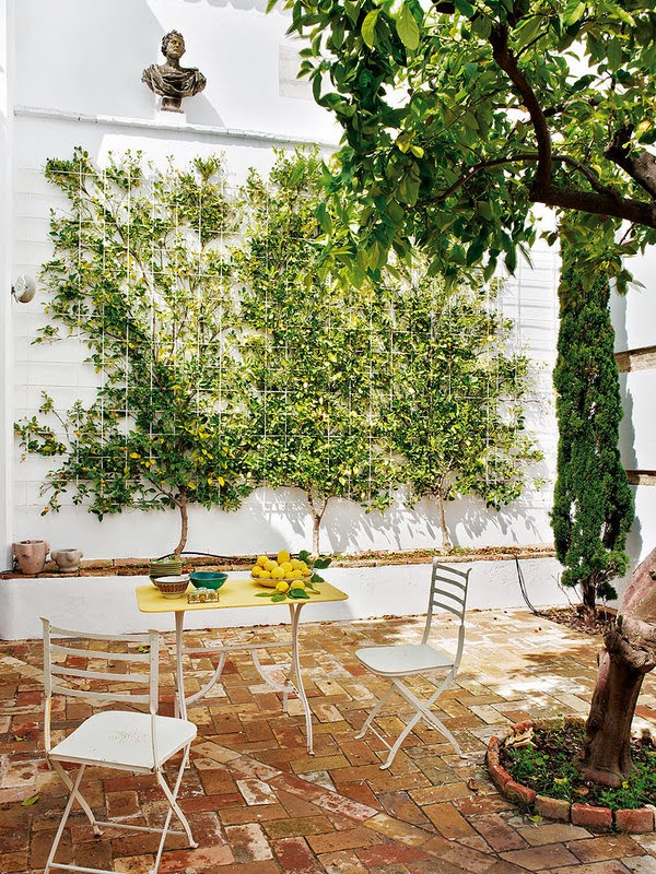 a summer house in Sevilla4