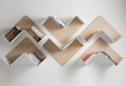 Creative Adaptable Shelving system - Fishbone1