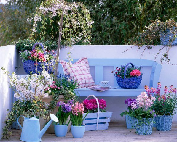Great Summer landscaping ideas2