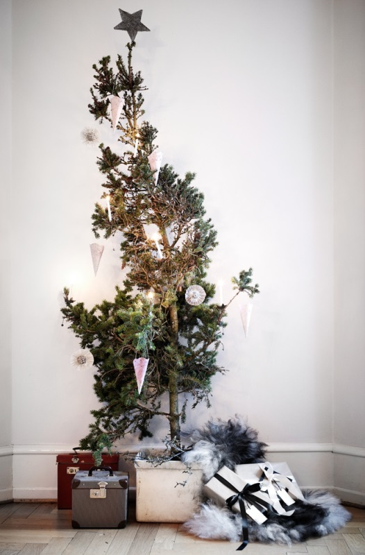 different Christmas tree1