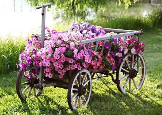 colorful garden ideas21