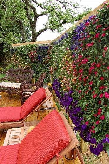 colorful garden ideas5