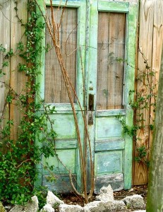 Decorate garden with recycling old doors10