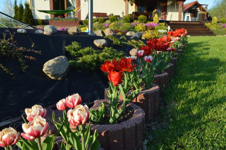Concrete garden jardinières (14)