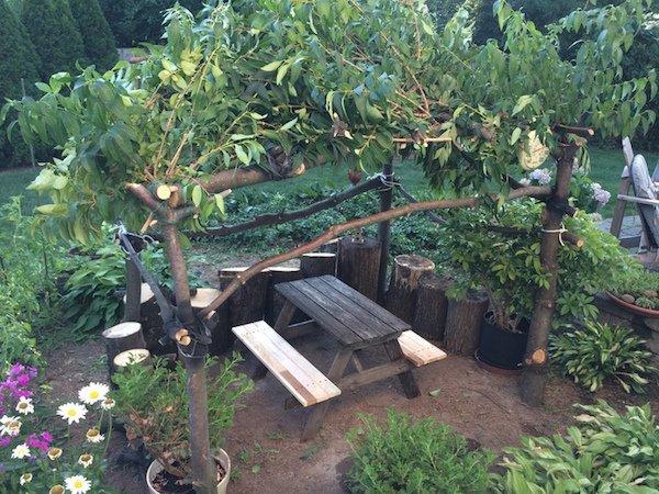diy fairy garden1