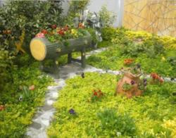 garden ideas (1)