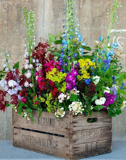 garden ideas (2)