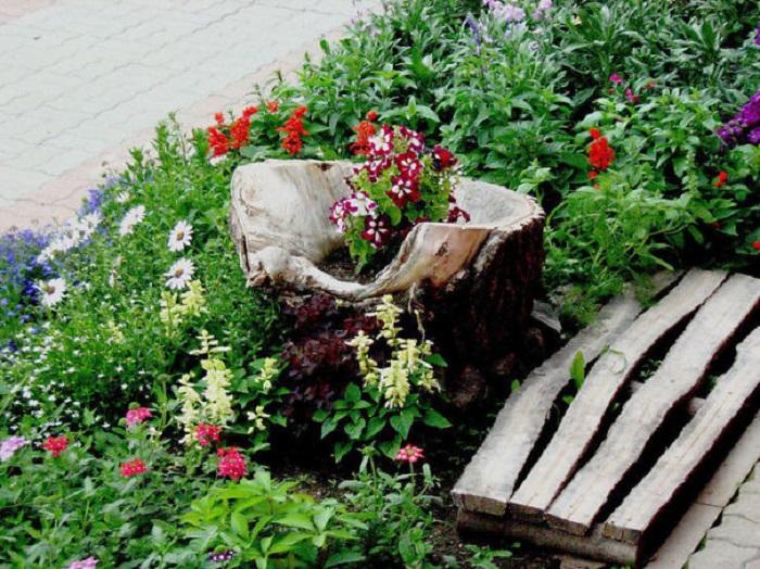 Old stumps flower gardens20