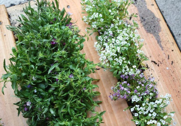 Pallet wooden planter ideas31