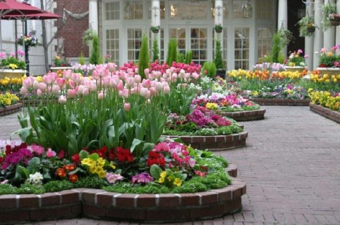 ideas for garden6