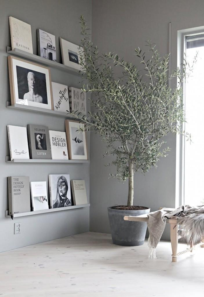 Trend Interior Decorating With Olive Trees My Desired Home