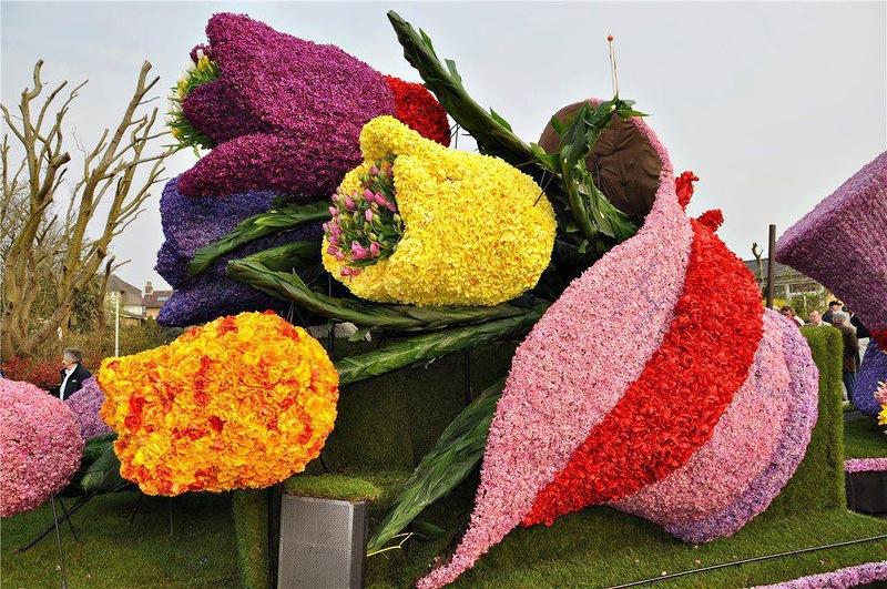 amazing flower beds1