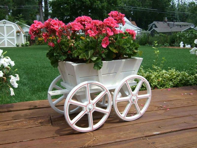 amazing flower beds10