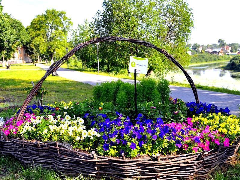 amazing flower beds12