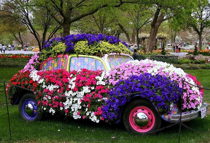 amazing flower beds13