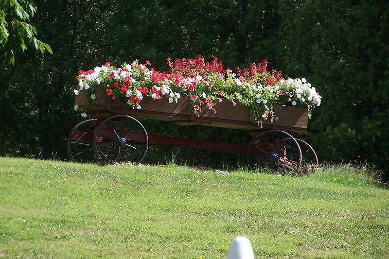 amazing flower beds16