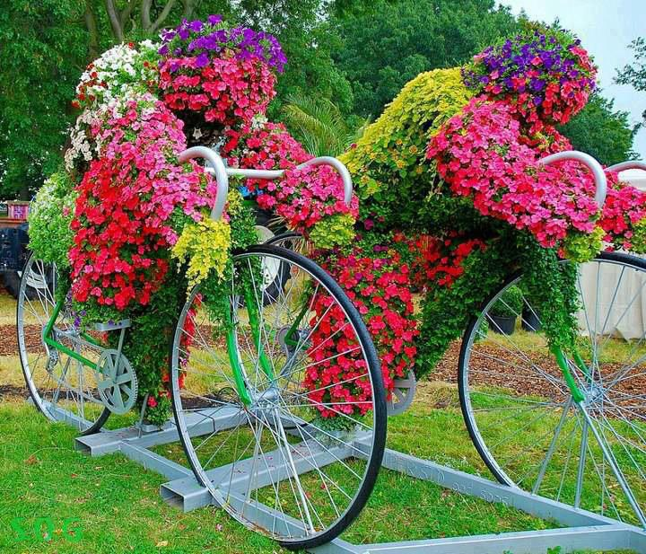 amazing flower beds2