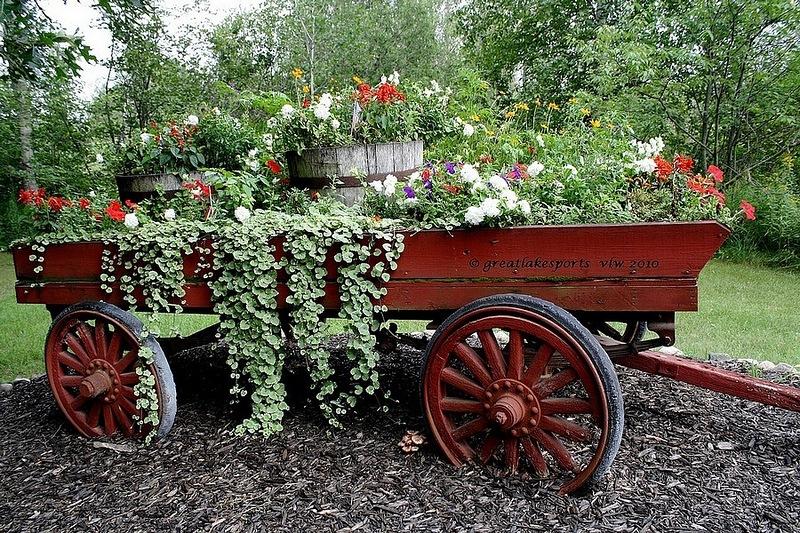 amazing flower beds21