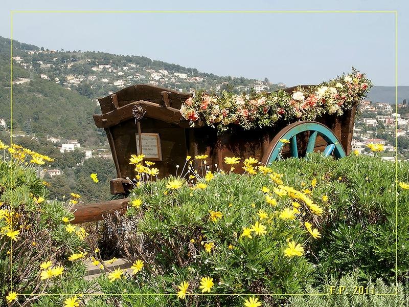 amazing flower beds22