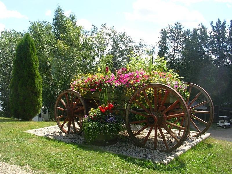 amazing flower beds23