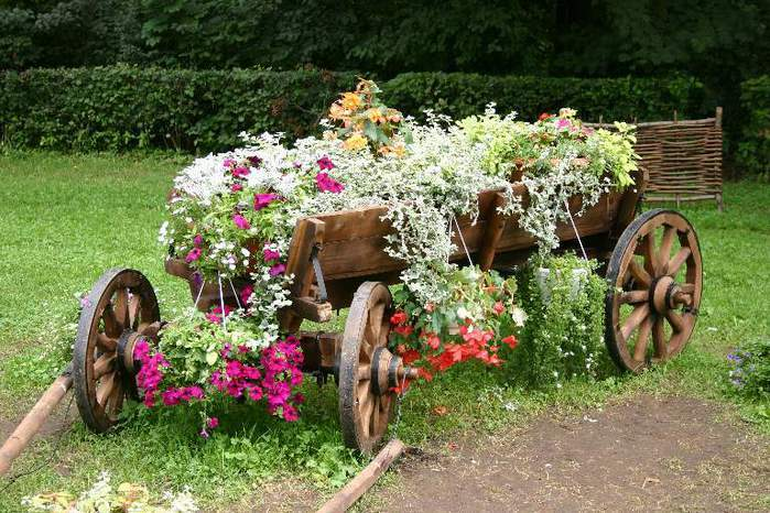 amazing flower beds24