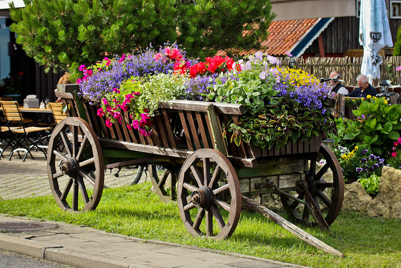 amazing flower beds27
