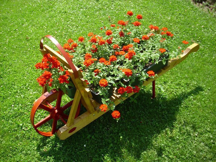 amazing flower beds28