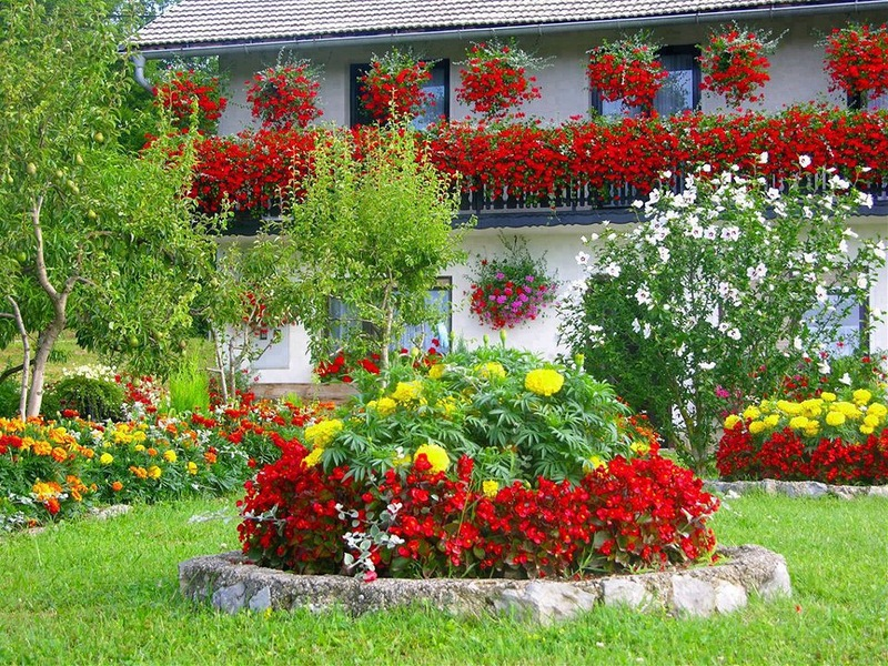 amazing flower beds29