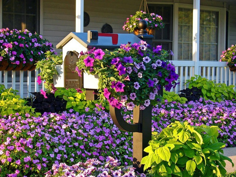 amazing flower beds3