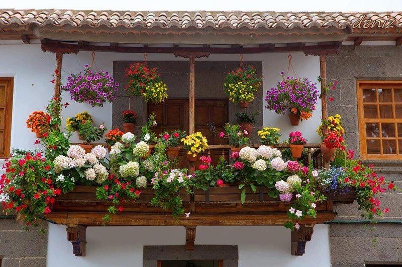 amazing flower beds32