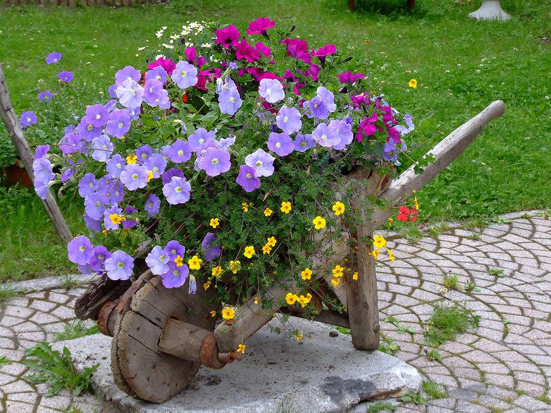 amazing flower beds6