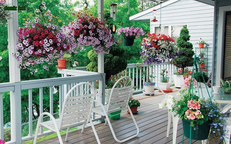 amazing flower beds7