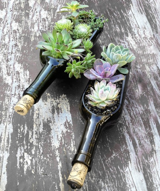 deco with succulents5