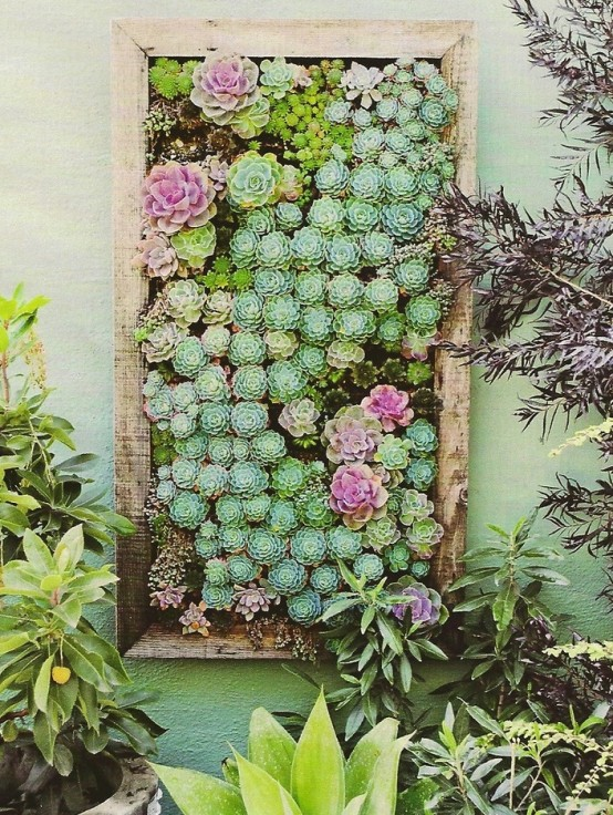 deco with succulents8