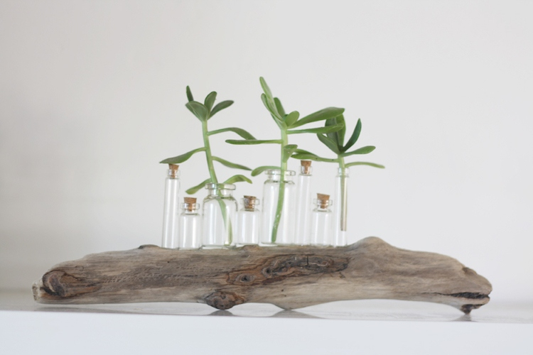 diy decorating ideas from driftwood (10)