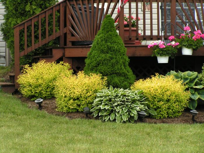 flower beds ideas15