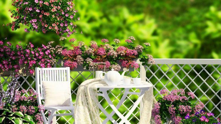DIY Ideas to Create a Floral Paradise1