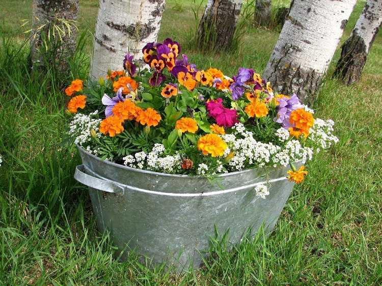 DIY Ideas to Create a Floral Paradise12